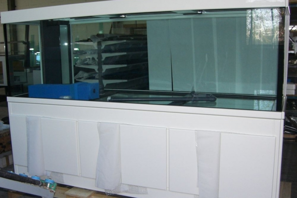 akvarijum-beliBAAA5E55-103E-BF14-7262-F59D323D0328.jpg